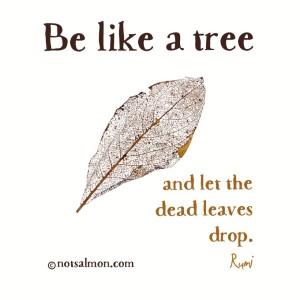 quote-tree-rumi